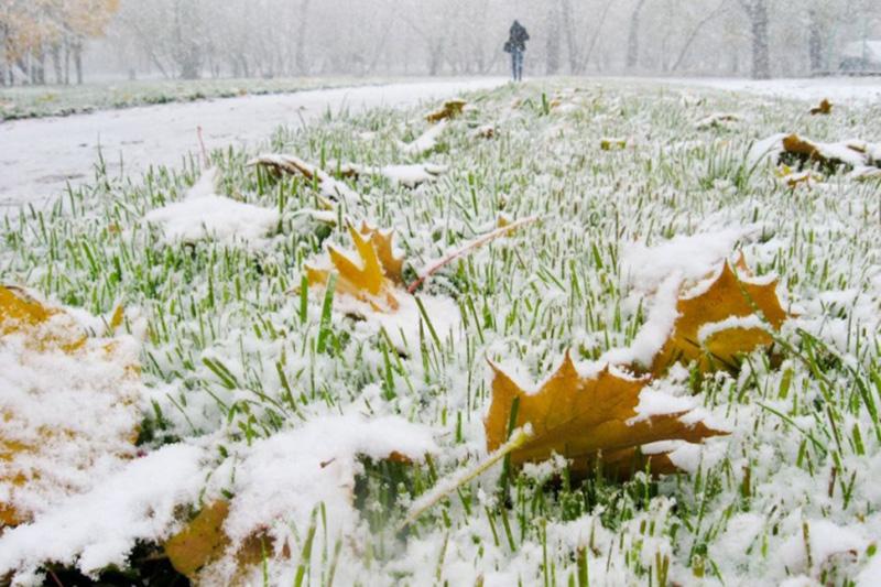 Фото: bagnet.org