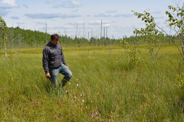 Помощник лесничего Усакинского лесничества Андрей Сай - наш проводник по болотам заказника.