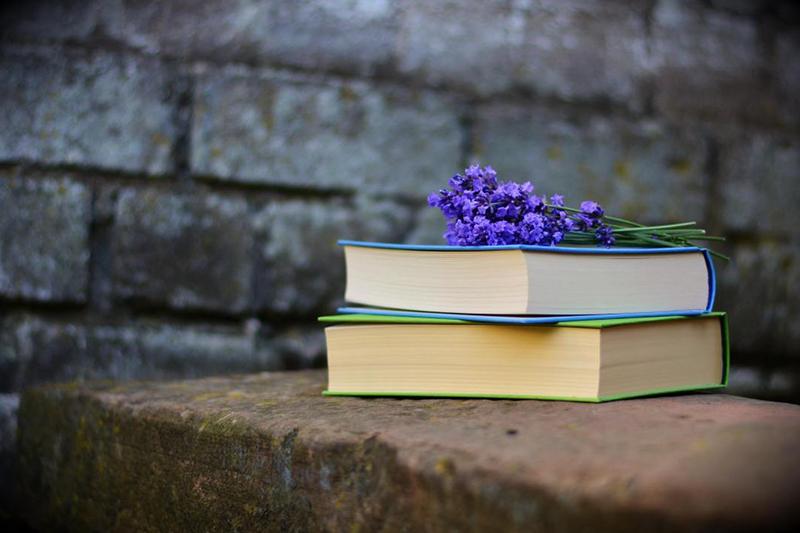 Фото: maracujaroxo.com