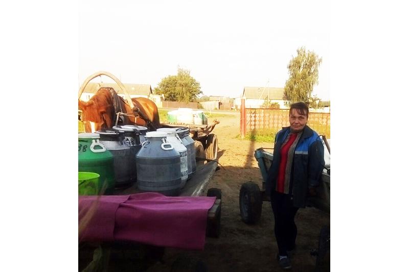 Галина Михаленок занимается сбором молока в Воротынским сельсовете уже восемь лет.