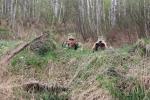 Памежнікі са стралянінай затрымалі двух парушальнікаў на Століншчыне