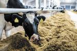 Беларусь плануе перайсці да дакладнага земляробства