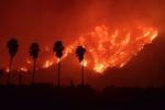 Площадь пожаров в Калифорнии превысила 3 тыс. кв. м