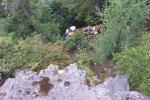 Дзяўчына ўпала з 50-метровай Скалы кахання ў Якуціі і выжыла