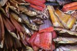 Рыбны кірмаш разгорнецца ў выхадныя ў Першамайскім раёне Мінска