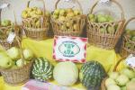 На агрокомбинате «Ждановичи» прошел ІІІ Евразийский форум овощеводов