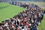 Беларускія студэты прымуць удзел у ІІ Летняй школе па правах бежанцаў