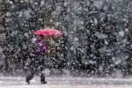 Первые дни весны в нашей стране начнутся с дождя и мокрого снега