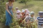 У мінскім дзіцячым садку зрабілі свой агарод
