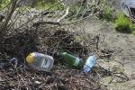 В Беларуси пройдут экологические акции
