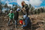«Тыдзень лесу — 2017» сабраў рэкордную колькасць удзельнікаў