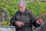 «Звязда» навестила одного из самых опытных виноградарей Европы