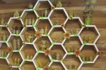 «Звязда» высвятляла, як робіцца правільны мёд