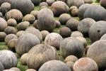 Откуда пошли шары Коста-Рики