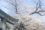 Малады беларускі дызайнер расказаў, чаму варта павучыцца ў японцаў