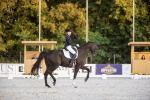 Вольга Сафронава: Конi — гэта нашы дзецi. Спартсменка расказала пра нюансы коннага спорту, догляд коней i iх трэнiроўку