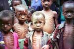 Удастся ли человечеству преодолеть массовый голод?