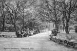 Аднаўленне старадаўняга парку пачынаецца ў Брэсце