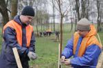 В республиканском субботнике приняли участие более 3 млн. белорусов