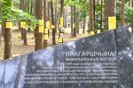 Стоит ли обелиски на братских могилах менять на кресты