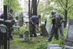 Дело о Военном кладбище в столице. Суд назначил штрафы спецкомбинату