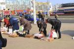 Как в Минске выявляют пункты нелегальной продажи краснокнижников