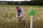 Змяненне клімату прымушае пераглядаць стратэгію раслінаводства і земляробства