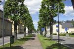 Чаму можна павучыцца ў самага «зялёнага» горада Швецыі?
