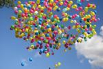 Воздушные шарики вредят природе и ее диким обитателям