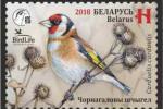 Выйшла ў абарачэнне паштовая марка з серыі «Птушкі года»