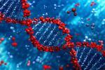 ДНК расказала пра нашых продкаў