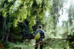 Муж і жонка з Гарадоцкага раёна заблукалі ў лесе, мужчына памёр