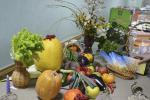 В Горках искали пути развития органического сельского хозяйства