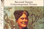 Васілій Цёркін з беларускім каларытам