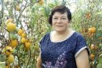 Жыхарка Бешанковічаў вырасціла 600 сартоў памідораў