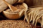 На Могилевщине намолотили миллион тонн зерна