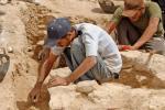 Археологический союз Шелкового пути