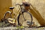 11-19 мая впервые в Беларуси пройдет Международная велосипедная неделя