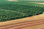 Проект «Предприимчивая землевладелица» привлекает активных белорусов