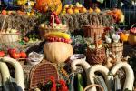 На наступным тыдні пачнецца сезон восеньскіх сельскагаспадарчых кірмашоў