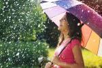 Немного дождей, и снова жара