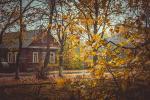 Пра восень, спадчыну і наканаванне