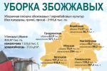 Геннадий Соловей почтил экипажи комбайнов, которые намолотили тысячу тонн зерна нового урожая