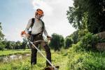 Почему так важно вовремя косить траву на городских газонах?