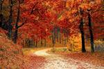 Начало октября будет теплым