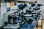 Топ-10 дасягненняў беларускіх вучоных у галіне фундаментальных і прыкладных даследаванняў