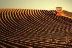 5 млн га высокаўраджайных земляў створаць у Кітаі