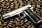 Россиянин приехал в Могилев к родственникам жены с пистолетом и патронами