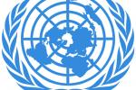 Постоянный координатор ООН в Беларуси призвала белорусов остаться дома