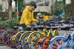 700 миллионов велосипедов